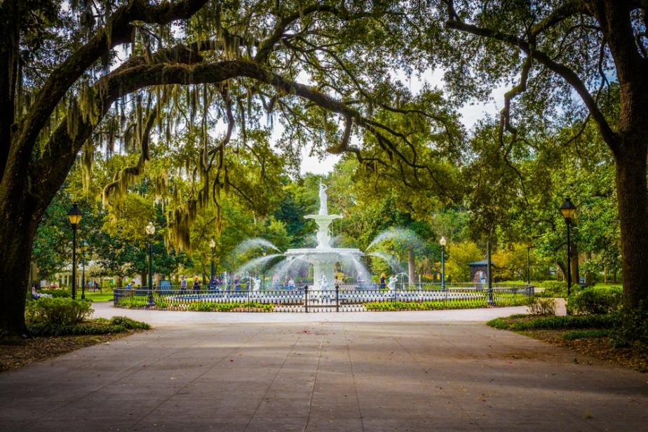 Forsyth fountain savannah